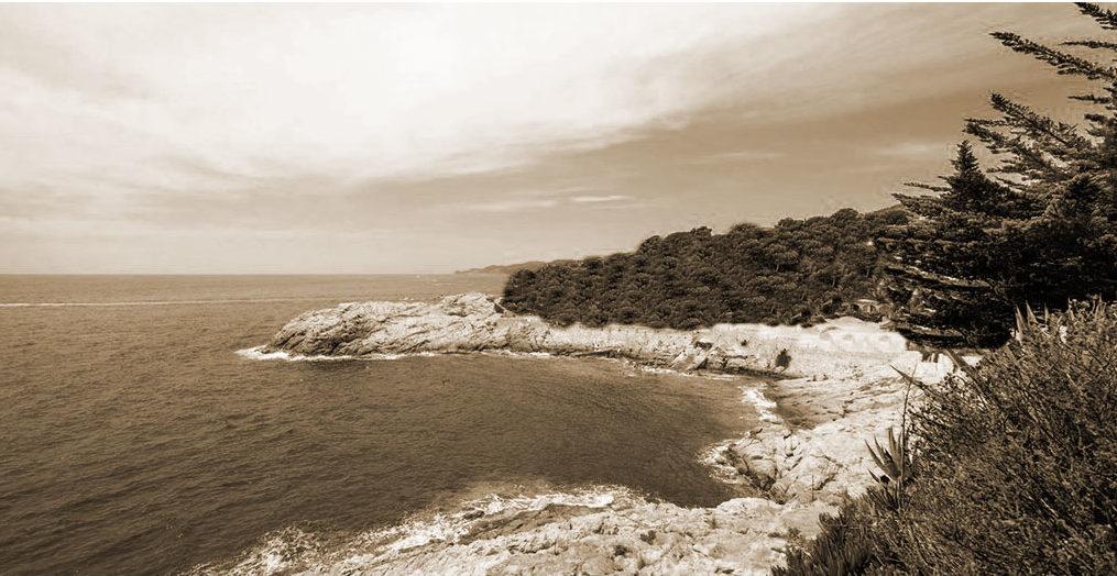 port-salvi-history-old
